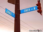 janefinch_streetsign (1).jpg