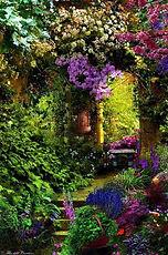 entrada enchanted wood.jpg