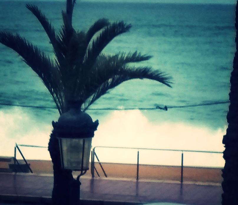 """""""Hugo"""" haciendo de las suyas. Captura desde el Hotel Marsol de Lloret., donde fuimos excelentemente tratados."""