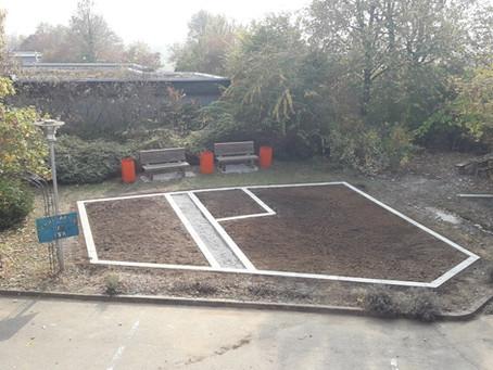 Schulgarten der TSR - Er wächst wieder!