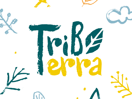 Tribo Terra - Escola da Floresta