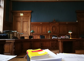🇬🇧 - Literature professor at the Sorbonne sentenced on appeal for copyright infringement