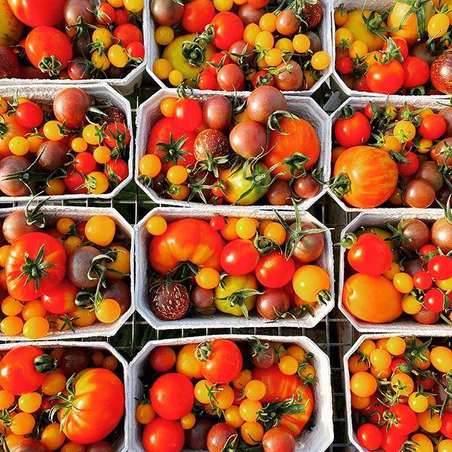 Rebel Farmer is at Chartham Farmers Market this morning 10-2 x x x.jpg