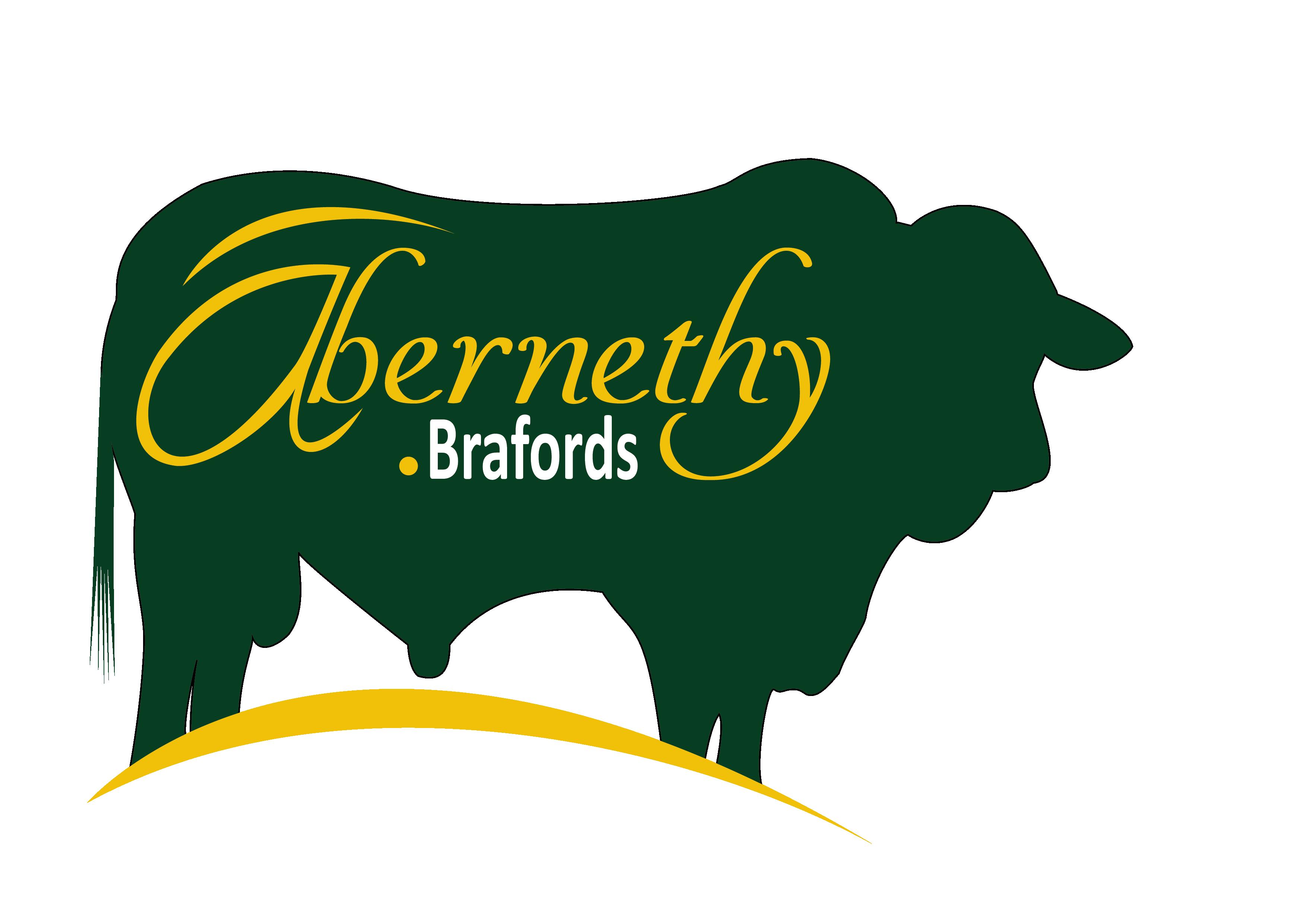Abernethy - Logo (Xtreme) PNG (transparent background)