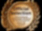 IFFNice.Oficial Selection.logo