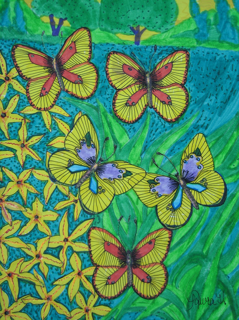 Butterflies by Laura Hudson