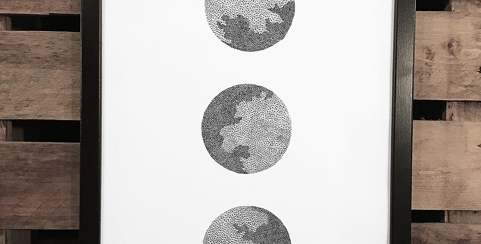 White Space 06