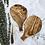 Thumbnail: 31x19cm - Round Paddle
