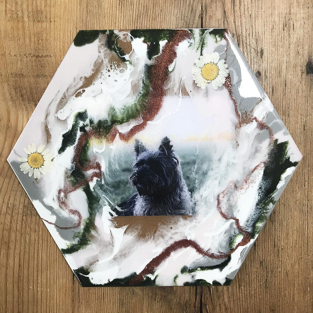 Custom Pet Hexagon