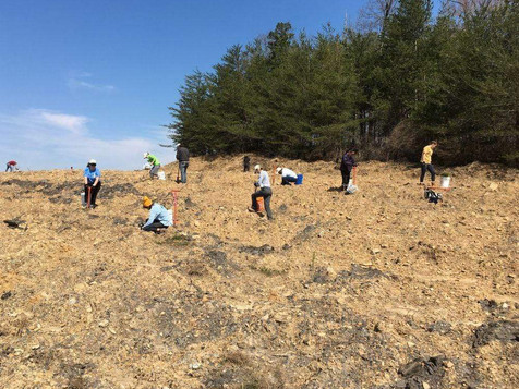 Appalachia-hillside-planting_2000x.jpg