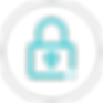 security-icon (1).png