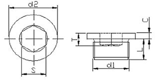 Bujão DIN 908 BSP INOX