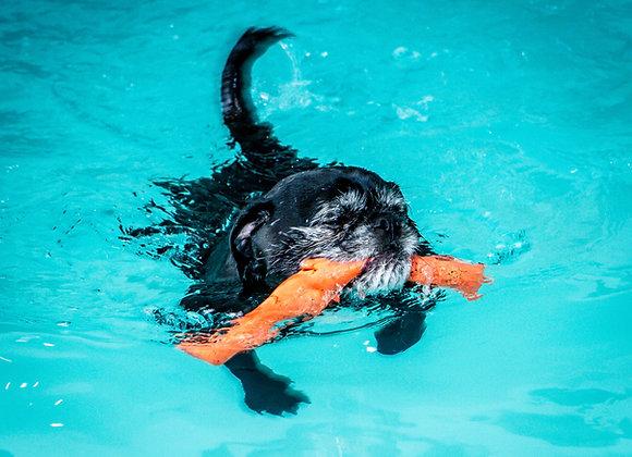 Non Assisted Swim