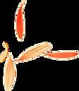 4-calendula-leafs.png