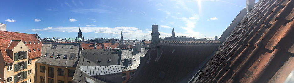 Copenhagen Skyline From Flashbulb Games Office