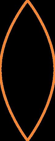 forma laranja 2.png