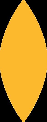 forma amarela 1.png