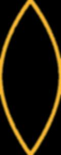 forma amarela 2.png