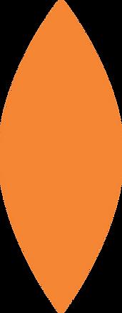 forma laranja 1.png