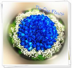99枝藍玫瑰求婚花束 BQ-142