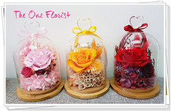 母親節保鮮花瓶 HA-S01