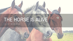 The Horse Is Alive