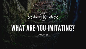What Are You Imitating?