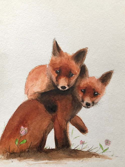 Fox cubs (Siblings)