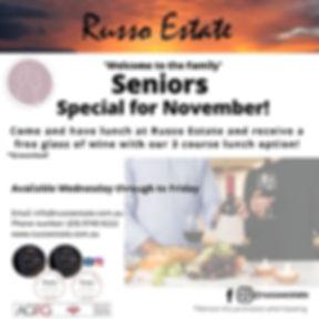 Nov Seniors Promo[11402].jpg