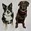 Thumbnail: Pet Portrait A3 size