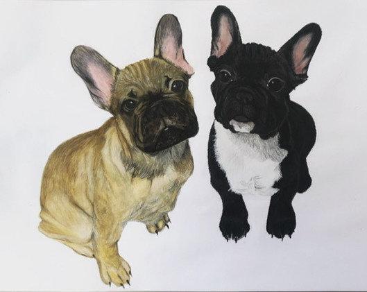 Pet Portrait A5 size