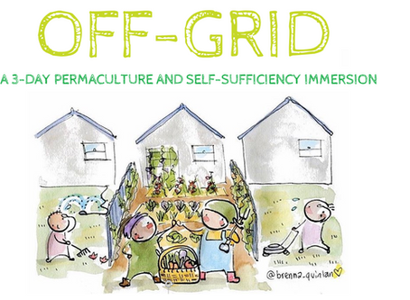 Ever wanted to go off-grid?