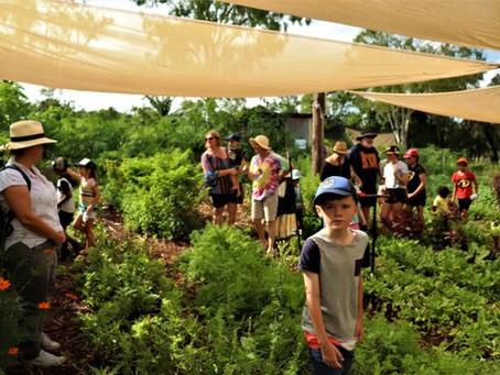 sunday farm tours