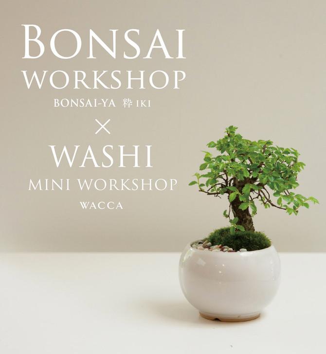 小さな盆栽をつくるワークショップ 1DAY WORKSHOP Bonsai屋 粋×WACCA