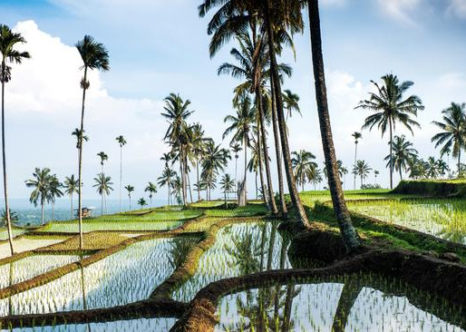 It's time to leave Bali behind and head to Lombok