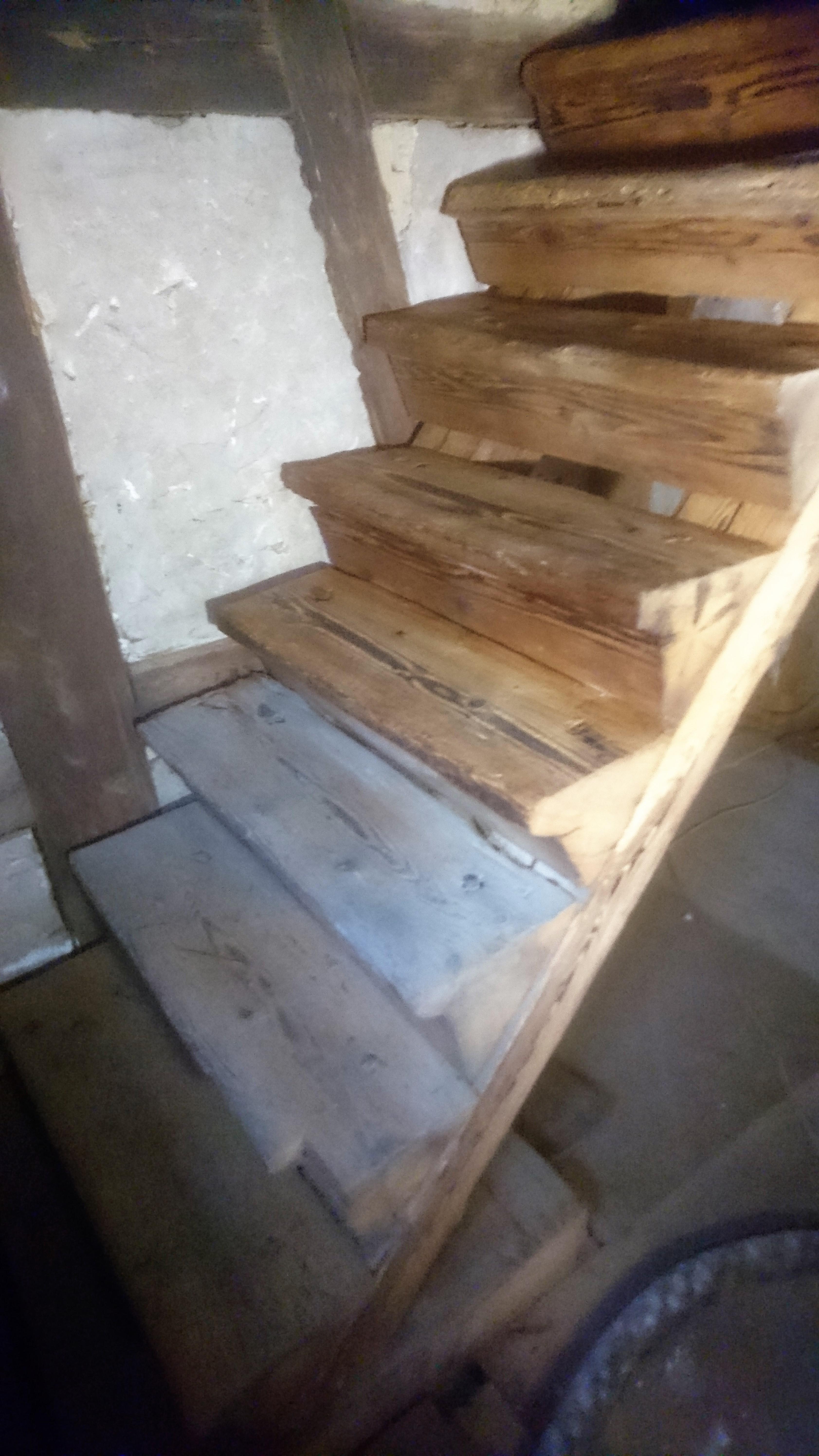 Treppenstufen saniert