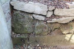 Starke Mossbildung auf Stein.