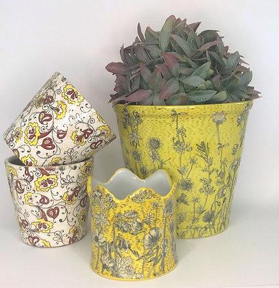 Yellow Planters
