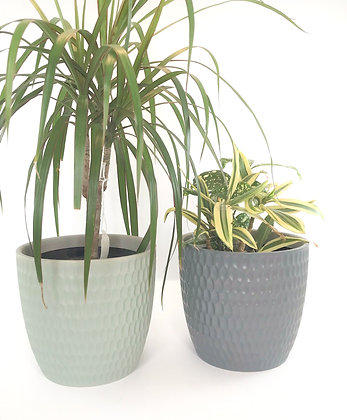 Decorative Planter Pots