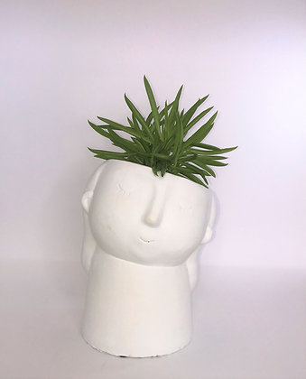 Medium Tilted Head Face Planter