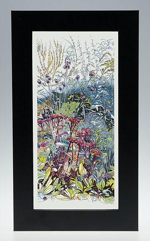 'In the Wild Garden' Framed Print