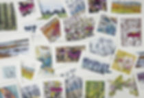 Greeting Cards, various designs