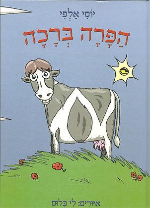 הפרה ברכה / יוסי אלפי