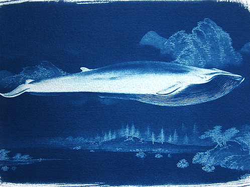 Whale in Landscape
