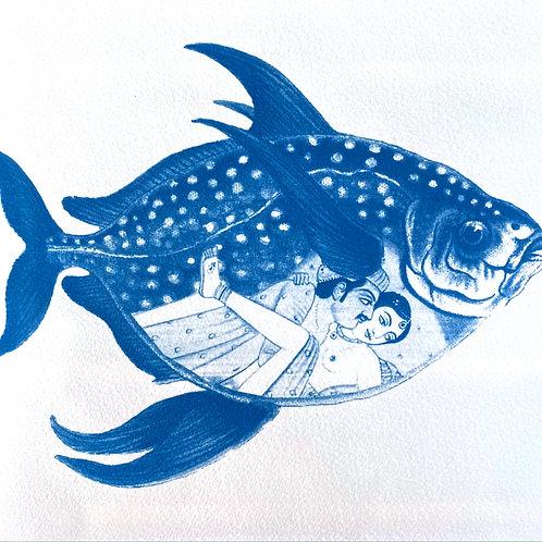 Kama Sutra Fish 1