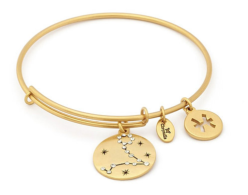 Chrysalis Pisces Expandable Bangle
