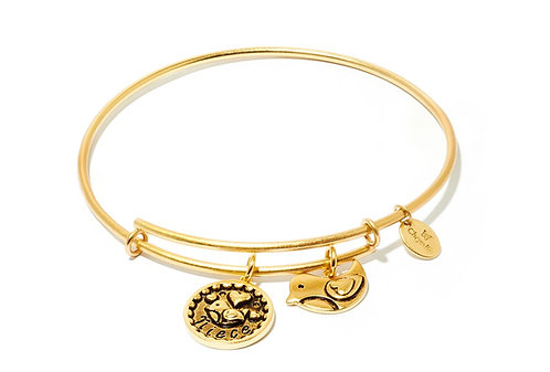 Chrysalis Friend & Family Niece Expandable Bangle