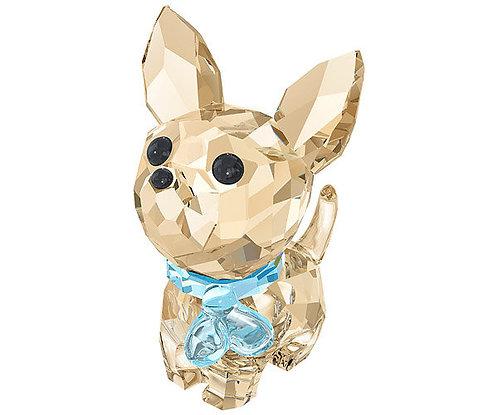 Swarovski Puppy Oscar the Chihuahua