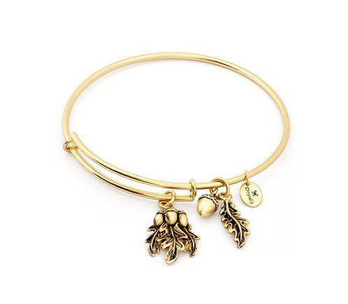 Chrysalis Acorn Expandable Bangle