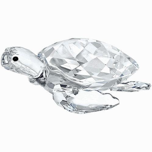 Swarovski Sea Turtle